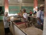 Cuba farmers market